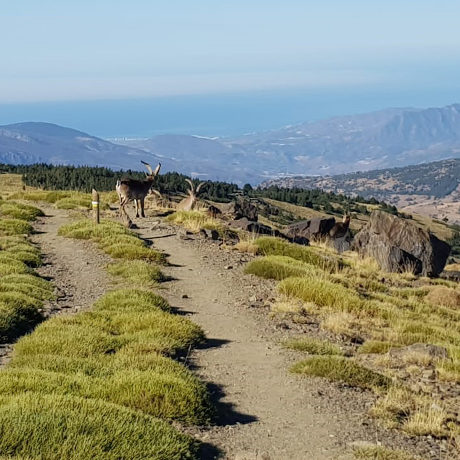 Andalusië wandelvakantie